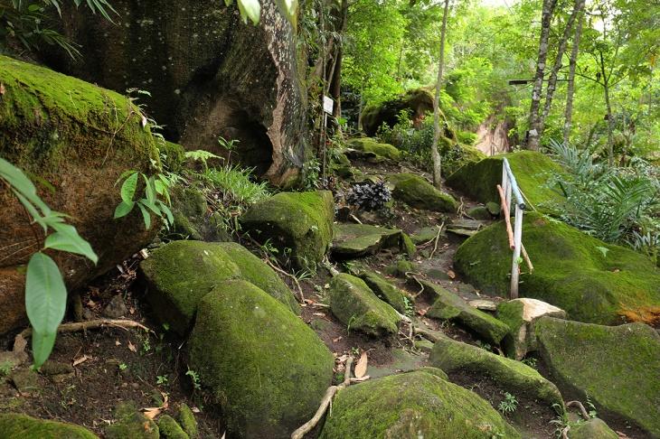Bukit Tangkiling 4 - Rute Pendakian
