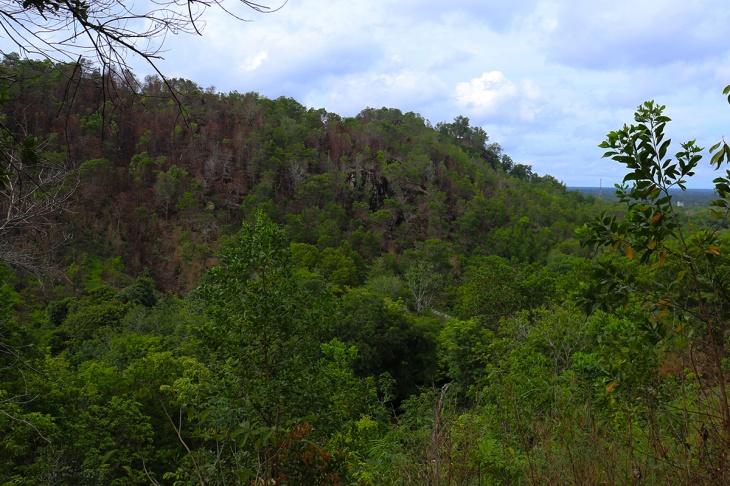 Bukit Tangkiling 6 - Pemandangan dari Atas Bukit