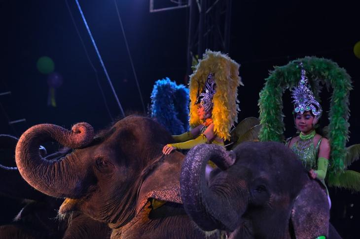 Oriental Circus @ Balikpapan 06