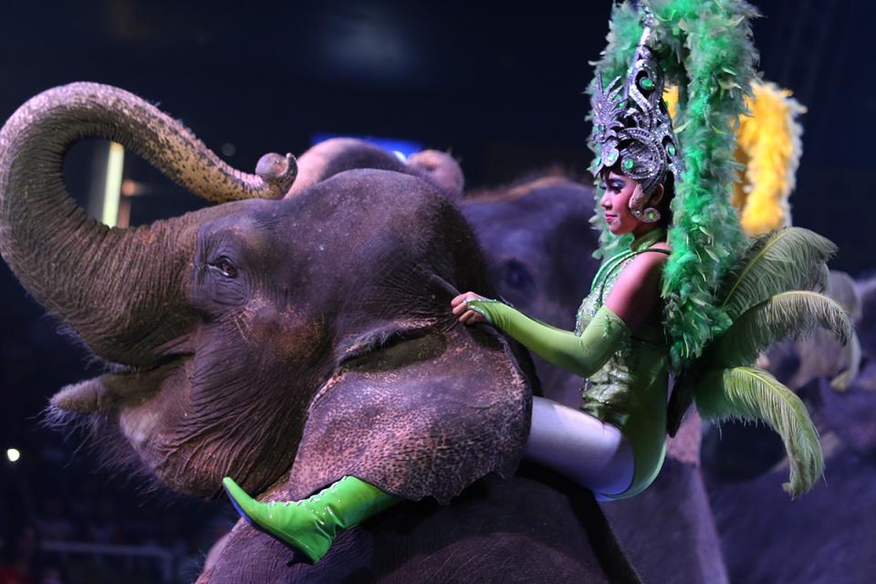 Oriental Circus @ Balikpapan 07